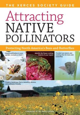 Attracting Native Pollinators The Xerces Society Guide To Conserving North American Bees And Butterflies And Their Habitat