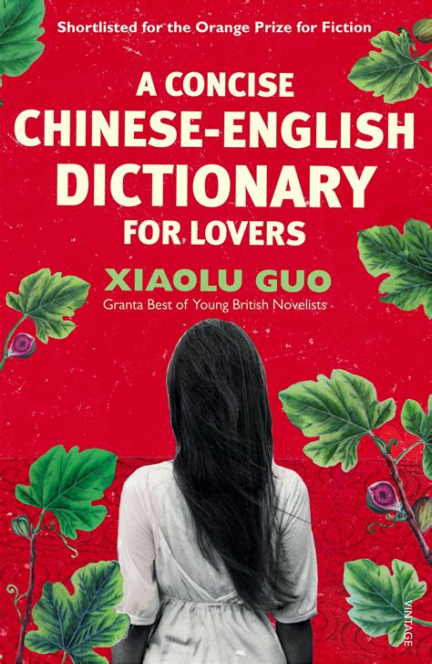 Concise Englishchinese Chineseenglish Dictionary