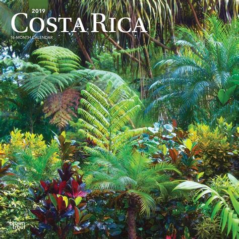 Costa Rica 2019 12 X 12 Inch Monthly Square Wall Calendar Central America Caribbean Pacific Scenic Travel