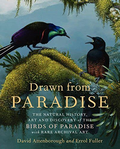 Drawn From Paradise The Natural History Art And Discovery Of The Birds Of Paradise With Rare Archival Art