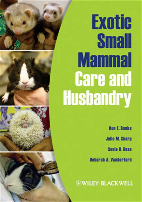 Exotic Small Mammal Care And Husbandry