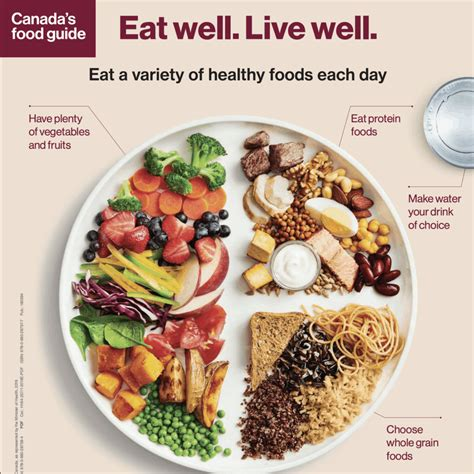 Food And Culture A Nutrition Handbook