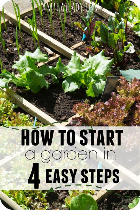 Free Plants Simple Propagation For The Home Gardener Beginner Gardening Book 4