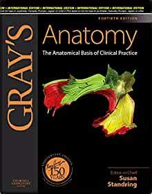 Grays Anatomy The Anatomical Basis Of Clinical Practice Expert Consult Online And Print 40e