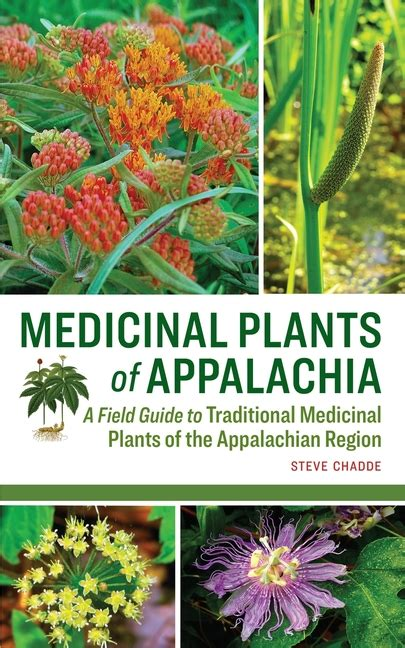 Guide To Medicinal Plants Of Appalachia A