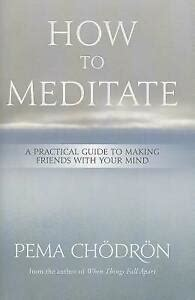 How To Meditate A Practical Guide To Making Friends With Your Mind