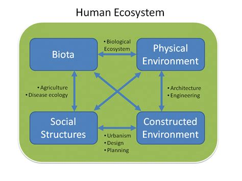 Humans As Components Of Ecosystems Pickett Steward T A