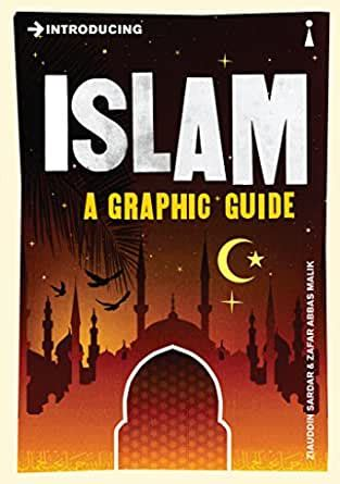 Introducing Islam A Graphic Guide Introducing English Edition