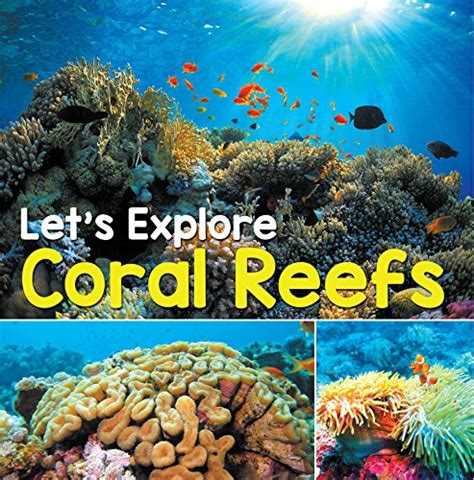Lets Explore Coral Reefs Under The Sea For Kids Childrens Fish Marine Life Books