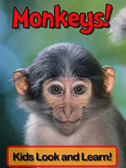 Monkeys Learn About Monkeys And Enjoy Colorful Pictures Look And Learn 50 Photos Of Monkeys English Edition
