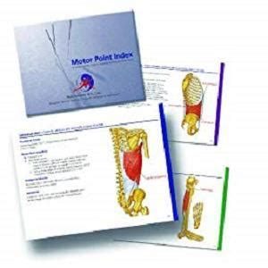 Motor Point Index An Acupuncturists Guide To Locating And Treating Motor Ponts English Edition
