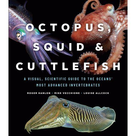 Octopus Squid And Cuttlefish A Visual Scientific Guide To The Oceans Most Advanced Invertebrates