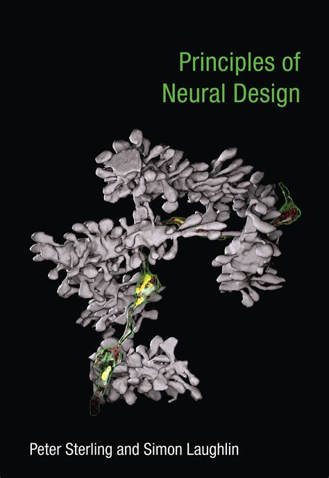 Principles Of Neural Design The Mit Press