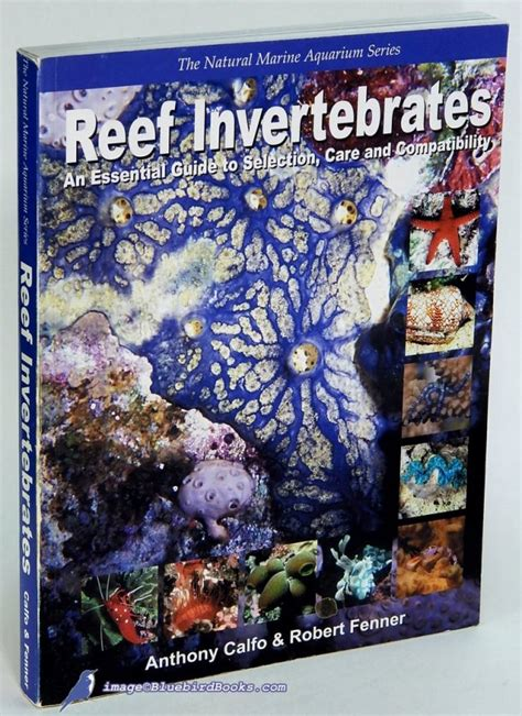Reef Invertebrates An Essential Guide To Selection Care And Compatibility