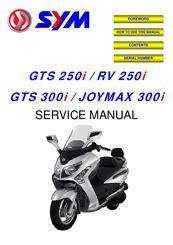 Service Manual Sym Gts 300 (ePUB/PDF)