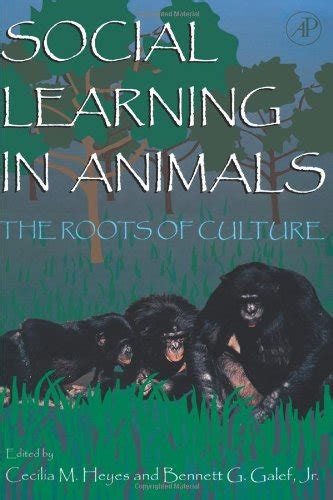 Social Learning In Animals The Roots Of Culture