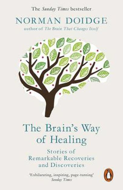 The Brains Way Of Healing Stories Of Remarkable Recoveries And Discoveries