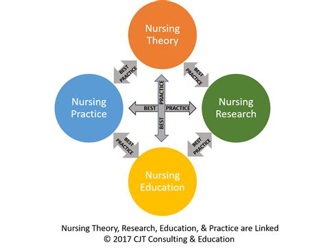 The Practice Nurse Theory And Practice
