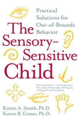 The SensorySensitive Child Practical Solutions For OutofBounds Behavior