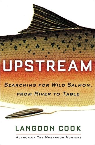 Upstream Searching For Wild Salmon From River To Table