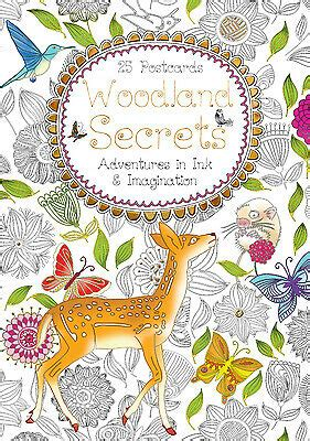 Woodland Secrets Postcard Book Adventures In Ink And Imagination