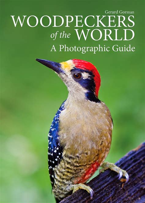 Woodpeckers Of The World A Photographic Guide