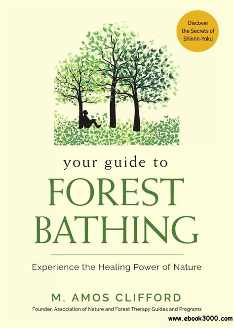 Your Guide To Forest Bathing Experience The Healing Power Of Nature