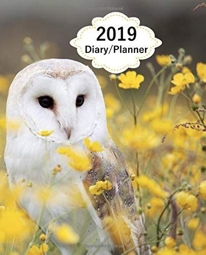 2019 Diary Planner Page A Day 365 Pages Daily Diary Planner Calendar Schedule Organizer For Daily Weekly Monthly Goals Owl Wildlife Meadow Flowers Cover