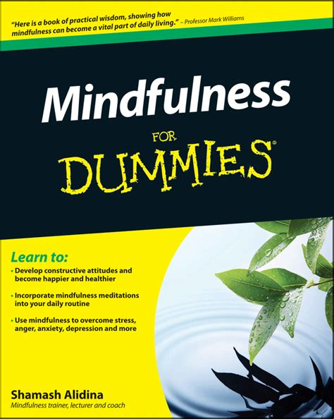 Mindfulness For Dummies 2e For Dummies Series